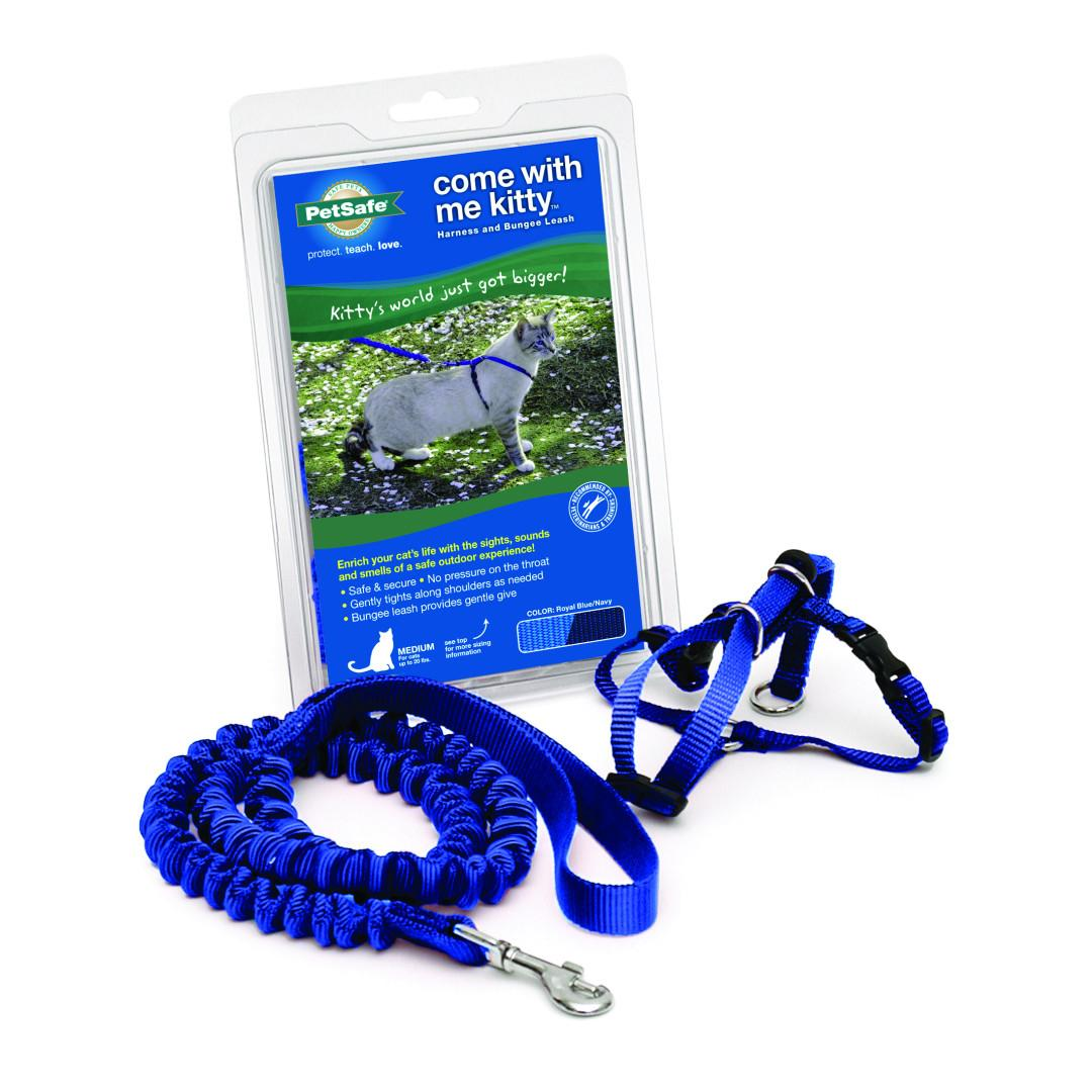 BaxterBoo – Come with Me Kitty Harness & Bungee Leash – Royal Blue